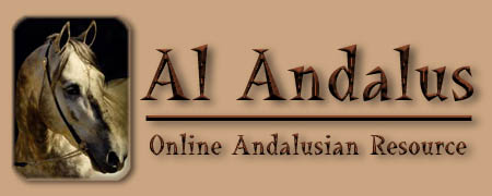 Welcome to Al Andalus - The Online Resource for Andalusian Horses